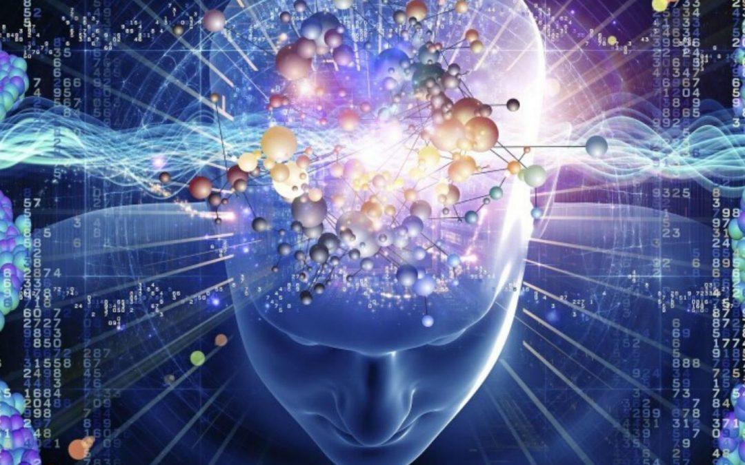 Az agyi tevékenység változása TM gyakorlás alatt