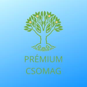 Maharishi Akadémia Prémium csomag